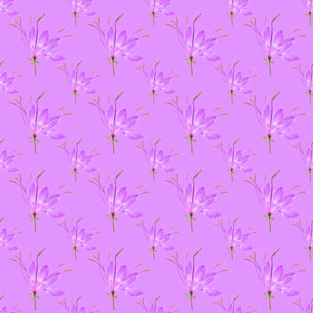 Cleome, spider flower. Illustration, texture of flowers. Seamless pattern for continuous replication. Floral background, photo collage for textile, cotton fabric. For wallpaper, covers, print.