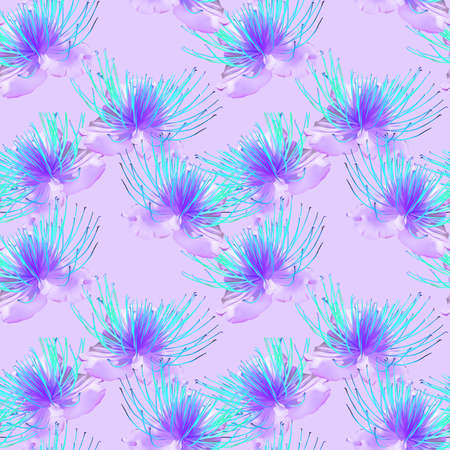 Capers. Illustration, texture of flowers. Seamless pattern for continuous replication. Floral background, photo collage for textile, cotton fabric. For wallpaper, covers, print.