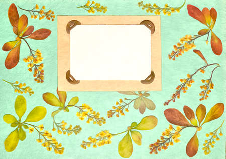 Page from old photo album. Barberry flowers in watercolor style. For texture, wrapper pattern or greeting, card, postcards. Digital painting-illustration. Watercolor drawing. Scrapbooking element. 스톡 콘텐츠