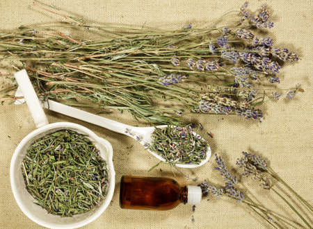 Lavender. Dry herbs for use in alternative medicine, phytotherapy, spa or herbal cosmetics. Preparing infusions, decoctions or tinctures. For powders, ointments, oil or tea, bath.