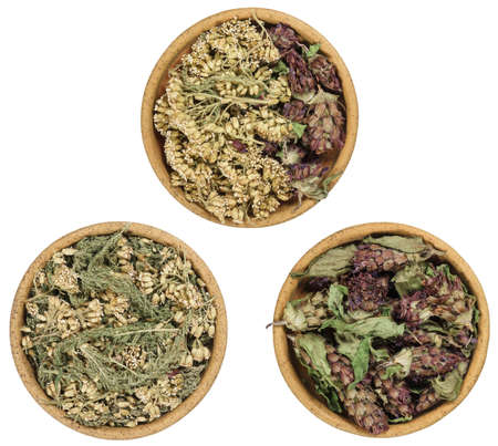 Set of spices, dried herbs and seeds with a high content of antioxidants, minerals and vitamins. Yarrow, astragalus. Bowls of dry herbs on white background. Top view, flat lay. Alternative medicine.