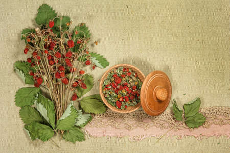 Strawberry. Dry berry for use in alternative medicine, phytotherapy, spa or herbal cosmetics. Preparing infusions, decoctions or tinctures. For powders, ointments, oil or tea, bath.