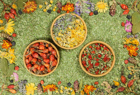 Set of spices, dried herbs and seeds with a high content of antioxidants, minerals and vitamins. Rosehip, strawberry, marigold, lavender. Bowls of dry medicinal herbs. Flat lay. Alternative medicine.
