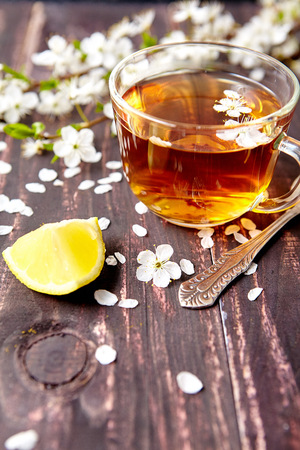 herbal knowledge: Leisure concept . Cup of tea with a lemon and cherry blossoms on an old wooden background