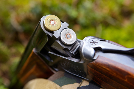 Opened wooden double-barreled hunting gun with two cartridges Stock Photo