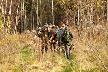 group of hunters during hunting in forest, chase hunting