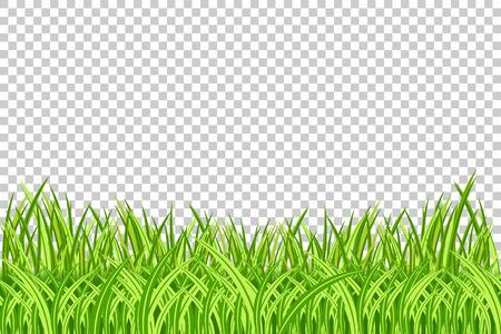 草の枠ベクトルイラストレーション。透明な背景に現実的な孤立した緑の草の境界線。