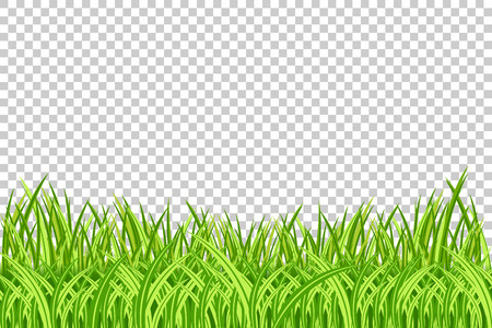 Grass Border. Vector Illustration. Realistic isolated green grass borders on the transparent background.