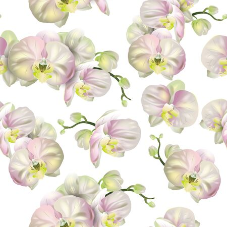 Vector botanical seamless pattern with orchid flowers on white. Modern floral pattern for natural health care products, textile, wallpaper, print, gift wrap, greeting or wedding background.