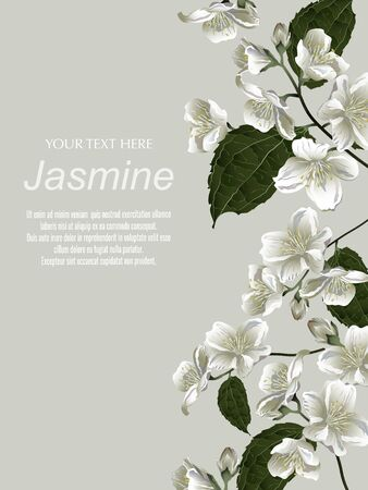 Template for greeting cards, wedding decorations, invitation, sales, packaging, cosmetics, perfume. Vector banner with Luxurious jasmine flowers on gold background. Space for text. Illustration