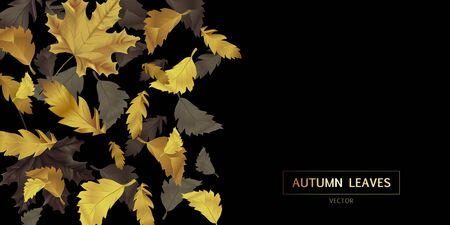 Vector advertising horizontal banner with gold and black falling leaves on black background. Can be used for flyers, banners or posters.
