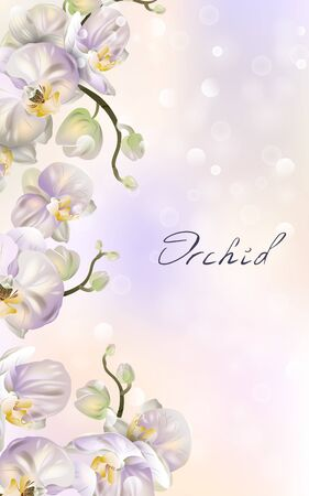 Vector banner with Luxurious orchid flowers for invitation, sales, packaging, natural cosmetics, perfume. Space for text. Illustration