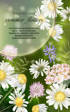 Vector banner with summer flowers for invitation, sales, packaging, natural cosmetics, perfume. Space for text. Standard-Bild - 145201307