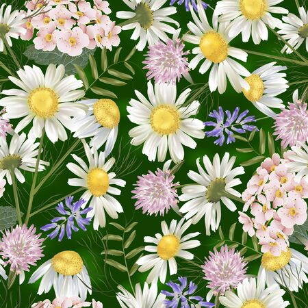 Vector botanical seamless pattern with summer flowers. Modern floral pattern for natural health care products, textile, wallpaper, print, gift wrap, greeting or wedding background. Standard-Bild - 145201401
