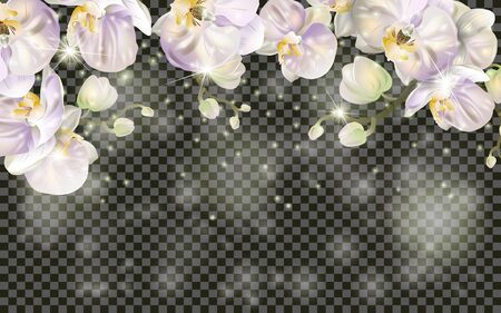 Detailed Blossoming orchid branch on transparent background. Spring or summer decoration. Realistic Orchid Blossom border. Spring design for cards, banners, flyers, party posters, headers. Standard-Bild - 145201402