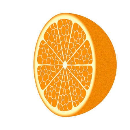 orange peel: Ripe orange fruit Illustration