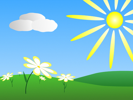 sky sun: Spring meadow with white daisies and bright sun