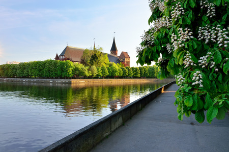 Konigsberg Cathedral on Kneiphof island. Kaliningrad, formerly K Lizenzfreie Bilder