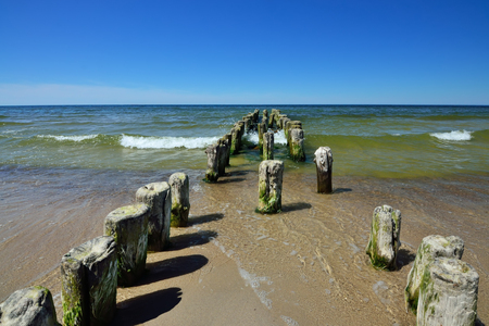 Old wooden breakwater on the sandy shore of the Baltic sea on a Sunny summer day