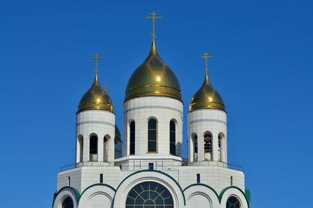 Domes of Cathedral of Christ the Saviour. Kaliningrad, formerly Koenigsberg, Russia 스톡 콘텐츠