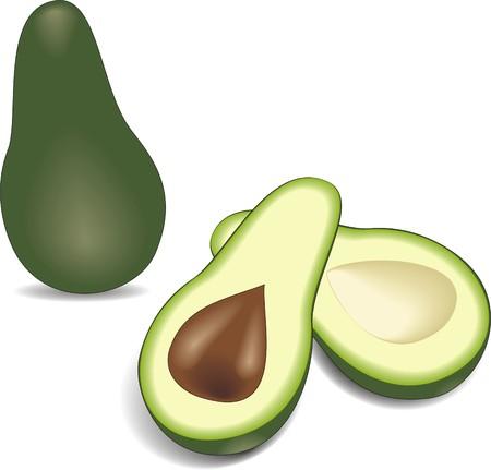 kernel: two avocado halves with kernel – alligator pear