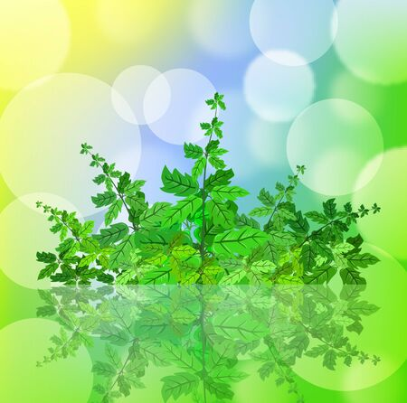 leafage: Green spring background with leafage and blurry light Illustration