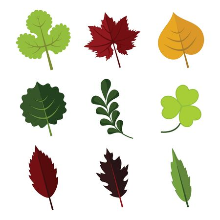 Various Floral Element Leaves Vector Illustration Graphic Design Set