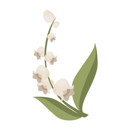 Decorative Jasmine Plant Flower Illustration Vector Graphic Design  イラスト・ベクター素材