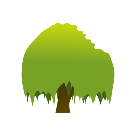 Isolated Banyan Tree Plant Vector Illustration Graphic Design