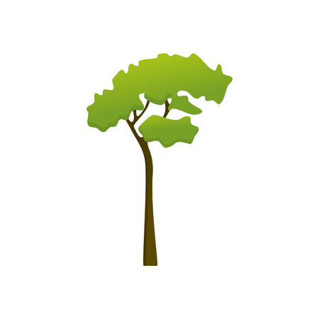 Isolated Tall Wild Tree Plant Vector Illustration Graphic Design  イラスト・ベクター素材