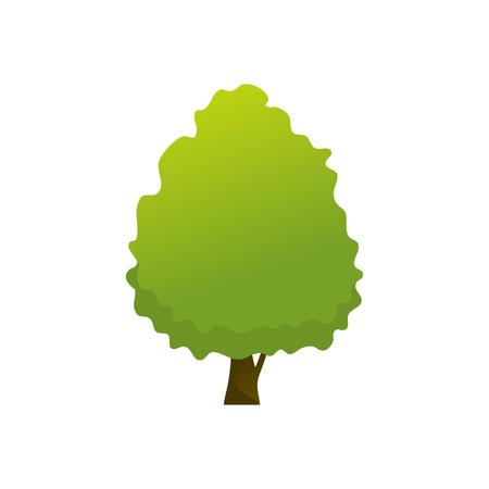 Isolated Common Garden Tree Plant Vector Illustration Graphic Design