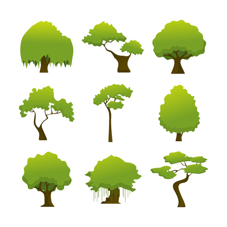 Various Wild Isolated Tree Plant Vector Illustration Graphic Design Set Çizim