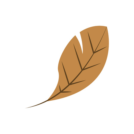Dry Leaf Shape Vector Symbol Illustration Graphic Design Template Banque d'images - 119507079