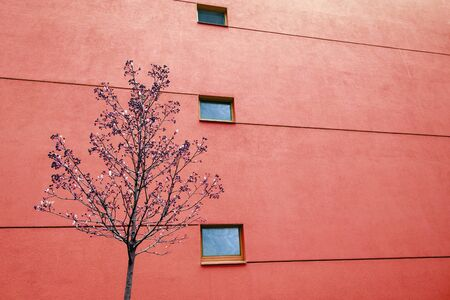 Huge wall on modern building with two windows and lines. Reflections in windows. Copy space