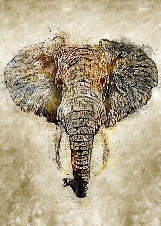 Elephant Vintage Watercolor Art