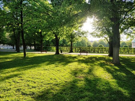 A beautiful park with green lawn with bright sun light