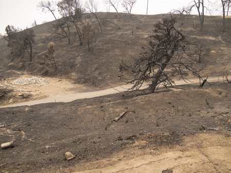 Daytime wide angle view of Grant Park, in Ventura, California after the 2017 Thomas Fire.