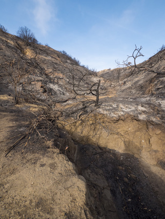 A wide angle view of a burnt and devastated hillside in California.
