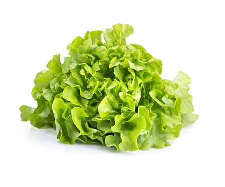 fresh green salad isolated on white
