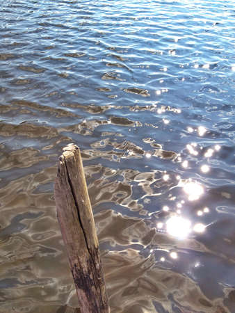 Wooden stake in the lake