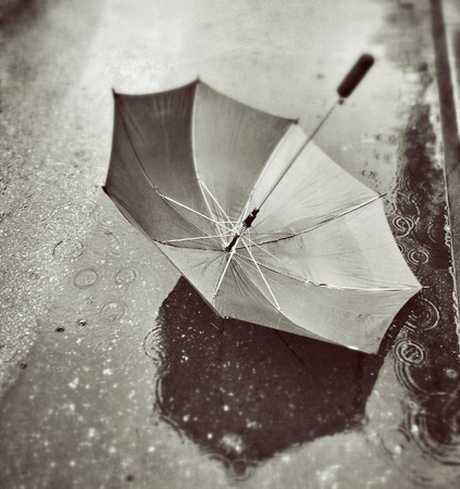 Umbrella in a puddle