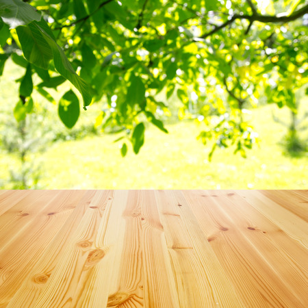 empty wooden table against sunny garden for background Stock Photo