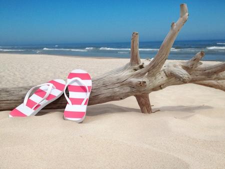 sandal tree: Flip flops on the beach
