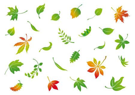 conjunto de folhas de outono de vetor Ilustración de vector
