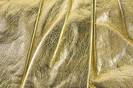 chamois leather: gold leather for background