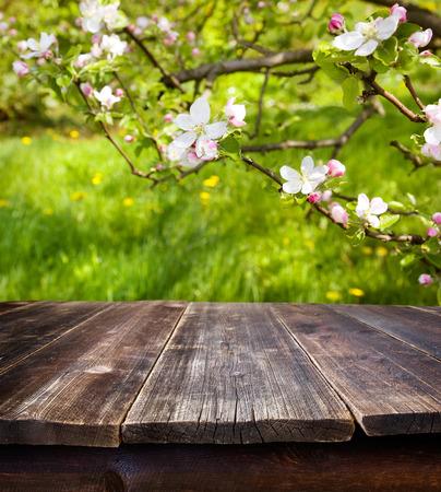 봄 정원의 배경에 대해 빈 테이블 스톡 콘텐츠