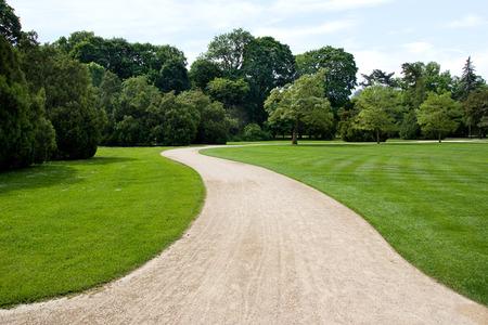 twisting road in the park Standard-Bild