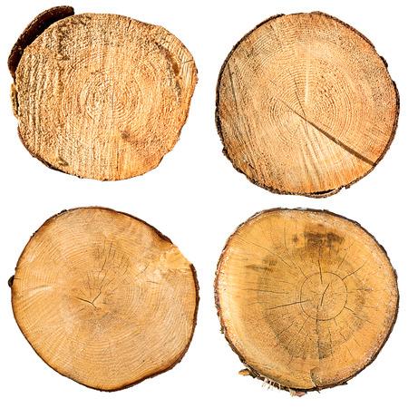 ringe: Baumstamm Querschnitt-Set, isoliert auf weiß, Clipping-Pfad enthalten Lizenzfreie Bilder