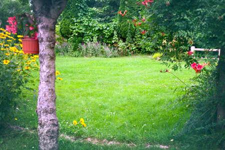 Beautiful backyard garden landscape. Green lawn background in the centre. Tree trunk and flowers in front. Standard-Bild