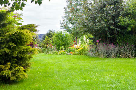 Beautiful backyard green garden landscape and fresh, green lawn background with a lot pf space.